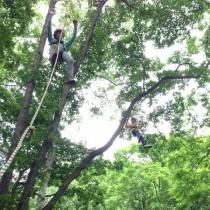 木登り体験学習